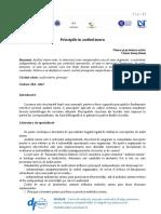 Ciurea Denis_Principiile in Auditul Intern.docx