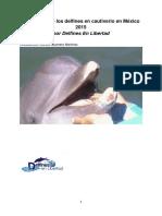 Delfines Mx El Informe La TraduccionFINAL Corregido 1
