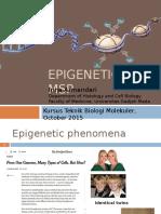 Epigenetic&MS PCR Inna