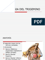 Neuralgia Del Trigemino Daxch