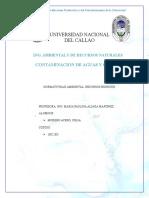 Normatividad Ambiental de RR.hh (1)
