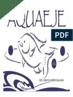 Aquaeje.Presentacion