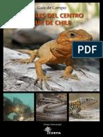 Reptiles de CentroSur de Chile