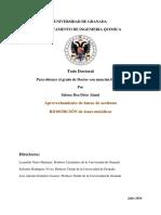 18935916.pdf