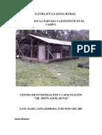 Avicultura en La Zona Rural