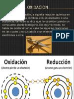 Bioquimica La Oxidacion y Su Incidencia en Los Seres Vivos
