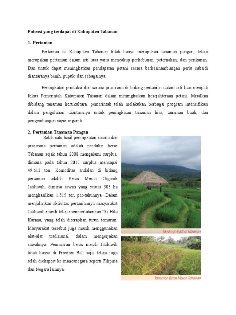 Potensi Yang Terdapat Di Kabupaten Tabanan