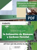 Calculos Para Biomasa y Co2 de un bosque tropical