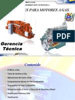 15 Motores a Gas Natural Lubricacion