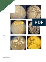 Minerales de W,Sn, Co, Ni, Ag, Au Fotos