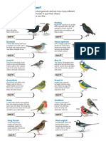 Bird Id Sheet