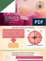 Prevención, Diagnóstico y Tratamiento de Cancer Cervicouterino, RESULTADOS EPIDEMIOLOGICOS