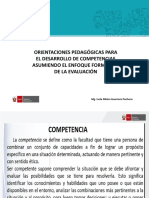 Curriculo-Orientaciones Pedagogicas