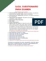 HIDRÁULICA.docx