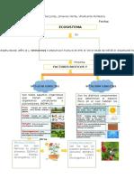 Biomas o Zonas de Vida