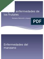 Plagas y Enfermedades de Los Frutales