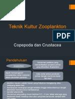 Teknik Kultur Copepoda-Crustacea