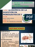 Digestion en Monosacarido en aves