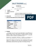 Ise 220 Informe Final Ferchale Trading Servicio de Pruebas Electricas a Rotor de Generador de 120 Mva