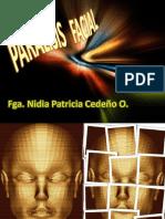 paralisis-facial2-1232145209775721-1