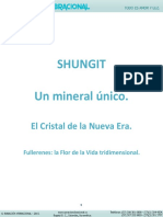 Shungit-Descripcion.pdf