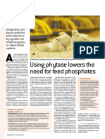 6238 Phyzyme XP Article - Poultry World - Nov 2008