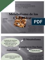 Metabolismo de Los Carbohidratos. Grupo4!