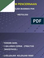 Histologi - Dr.elisa Budiman