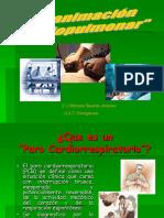 Reanimacion Cardiopulmonar