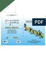 Livro Direitos Humanos.pdf