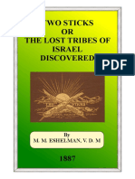 TWO-STICKS-OR-THE-LOST-TRIBES-OF-ISRAEL-DISCOVERED.pdf