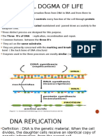 Central Dogma of Life