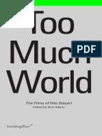 HitoSteyerl-tooMuchWorld