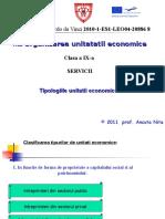 documents.tips_organizarea-unitatii-economice-clasa-a-ix-a-nita-ancuta.ppt