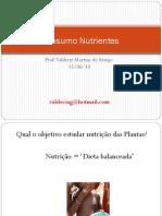Resumo Nutrientes das plantas e Nutrição da Cana de Açúcar