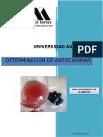 Practica 6 -Antiocianinas.docx