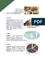 Arqueología Ramas de La Ciencias
