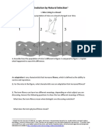 naturalselectionprotocol