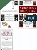 Plantas - Arbustos y Trepadoras