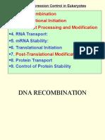 Eukaryote Regulation of Gene Expression
