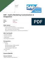 Hybris Marketing Customization Integration
