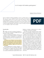 Alteraciones Culturales Josefina Ba2 Copia