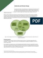 soty portfolio - biodviersity