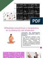 Biología Del Desarrollo Para La Fisioterapia