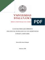 DQI_Nanomateriales Hibridos Organicos