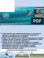 Gas Natural completo