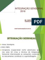 TERCEIRA AULA INTEGRACAO SENSORIAL.pdf