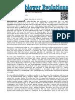 95591875-Whistleblower-Evolutions.pdf