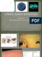09.Infeksi Dalam Kehamilan