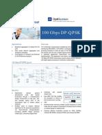 100 Gbps DP-QPSK.pdf
